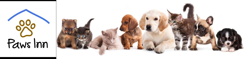 Paws Inn No-Kill Animal Shelter, White County, Arkansas